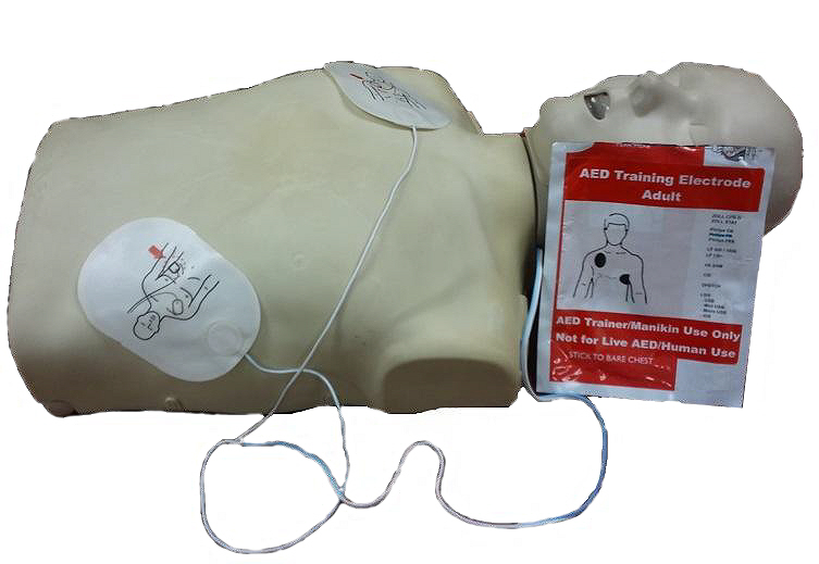 CPR Dynamix Adult Electrode (for AED Trainer APP)